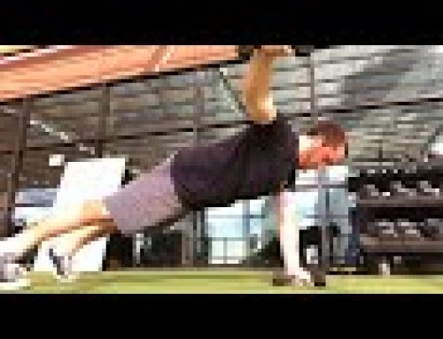 Plank Rear Delt Fly